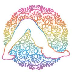 women silhouette dolphin yoga pose ardha pincha vector image