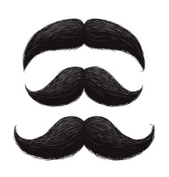 Funny retro hair mustaches set vector