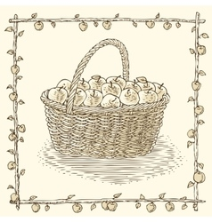 Wicker Basket with Ripe Apples vector image