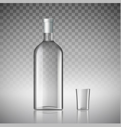 Bottle of vodka vector