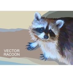Racoon made of polygons Eps 10 vector