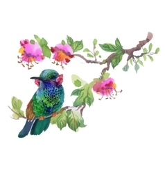 Watercolor colorful Bird on branch with green vector