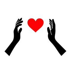 Heart in Hands Silhouette on White Background vector image vector image