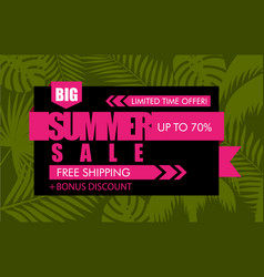 Summer sale banner with green tropical exotic palm vector