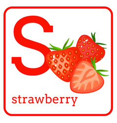an alphabet with cute fruits letter s strawberry vector image