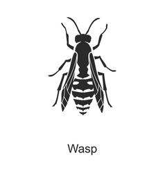 Insect wasp iconblack icon isolated vector