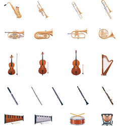 Instruments of the orchestra vector