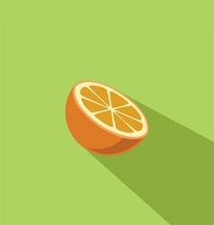 Orange Fruit Flat Design vector image