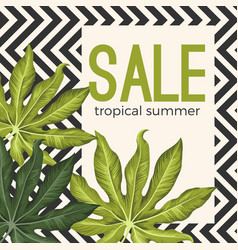 Sale tropical summer poster with jungle leaves on vector