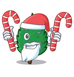 Santa with candy mint leaves mascot cartoon vector