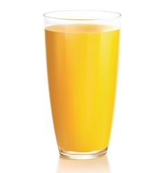 Orange juice vector image vector image