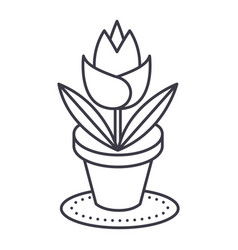 rose plant pot line icon sign vector image