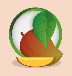 mango with leaves natural badge vector image