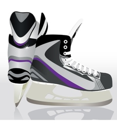 Ice skates - sports equipment vector