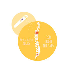 Inflamed spine healthcare icon vector