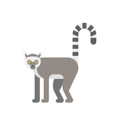 flat style of lemur vector image vector image