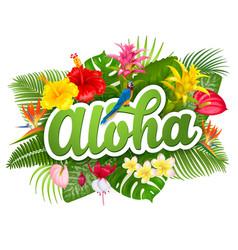 aloha hawaii lettering and tropical plants vector image