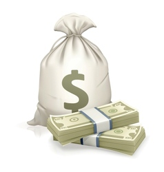 Sack and money vector image vector image