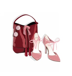 Beautiful shinning Shoes and bag vector image