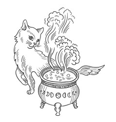 cat witch and cauldron with witchcraft halloween vector image
