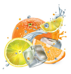 fresh orange and lemon with ice cubes and splashes vector image