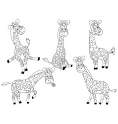 giraffes set vector image