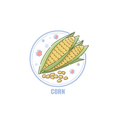 icon corn cobs and seeds in circle flat linear vector image