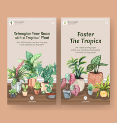 Instagram template design with summer plant vector