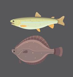 Isolated river fish set freshwater sea cartoon vector
