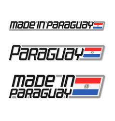 made in paraguay vector image