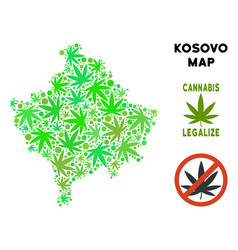 Royalty free cannabis leaves style kosovo map vector