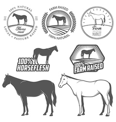 Set of horse meat labels and badges vector