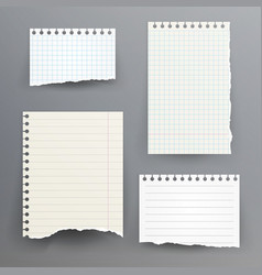notebook papers with torn edge vector image vector image