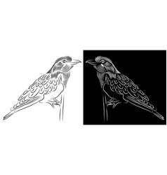 beautiful bird sitting on stem vector image