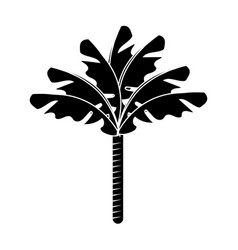 contour cute and exotic palm with leaves vector image