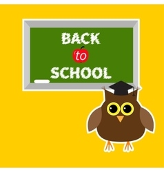 Owl in graduate hat academic cap and green board vector