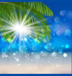 sea sand palm vector image