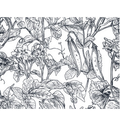 seamless pattern with hand drawn vegetable vector image