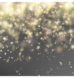 Gold glitter on transparent background EPS 10 vector image