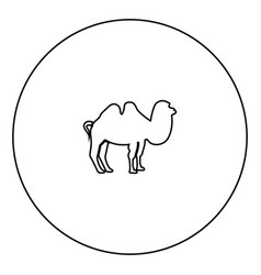 Camel black icon in circle outline vector