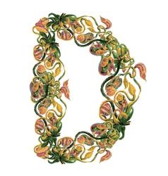 Capital letter D vector