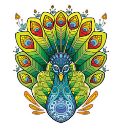 peacock colorful vector image