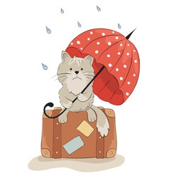 Sad cat with an umbrella vector image