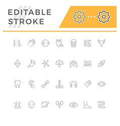 Set line icons of human organs vector