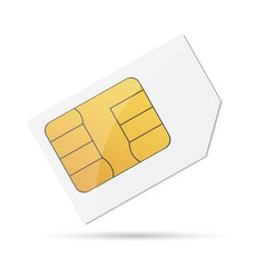 sim card design vector image
