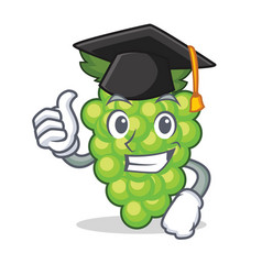 Graduation green grapes character cartoon vector