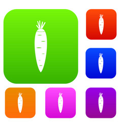 carrot set collection vector image vector image
