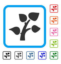 plant sprout framed icon vector image