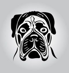 portrait of a bullmastiff vector image vector image