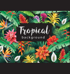 Background from tropical flowers vector